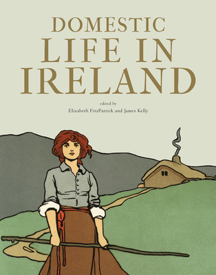 Domestic Life in Ireland: Section C v. 111: Proceedings of the Royal Irish Academy - Kelly, James (Editor), and Fitzpatrick, Elizabeth (Editor)
