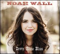 Down Home Blues - Noah Wall