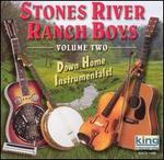 Down Home Instrumentals, Vol. 2
