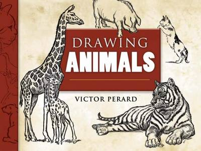 Drawing Animals - Perard, Victor