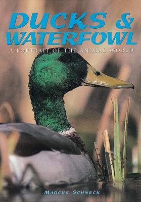 Ducks & Waterfowl: A Portrait of the Animal World - Schneck, Marcus