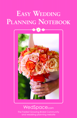 Easy Wedding Planning Notebook - Lluch, Alex A