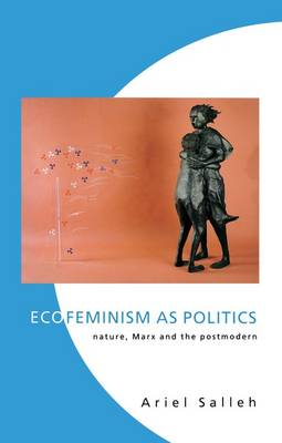 eco feminism Karen j warren is a feminist philosopher who has published essayson ecofeminism and edited several special issues on ecofeminism forhypatia: a journal of feminist philosophy and the americanphilosophical association newsletter on feminism andphilosophy.