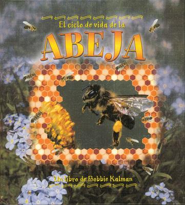 El Ciclo de Vida de la Abeja - Kalman, Bobbie