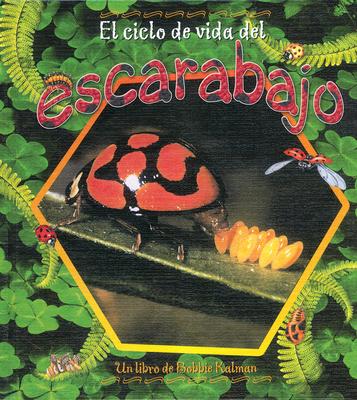 El Ciclo de Vida del Escarabajo - Aloian, Molly, and Kalman, Bobbie