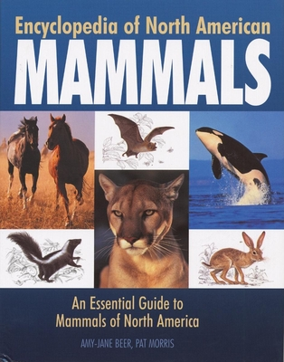 Encyclopedia of North American Mammals: An Essential Guide to Mammals of North America - Beer, Amy-Jane, Dr., and Morris, Pat