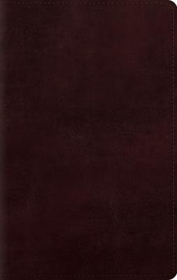 ESV Large Print Personal Size Bible -