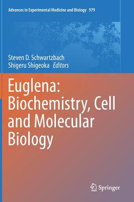 Euglena: Biochemistry, Cell and Molecular Biology - Schwartzbach, Steven D (Editor)