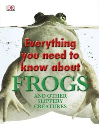 Everything You Need to Know About Frogs -