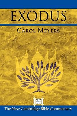 Exodus - Meyers, Carol L, Professor, and Witherington, Ben, III (Editor), and Arnold, Bill T, Professor, Ph.D. (Editor)