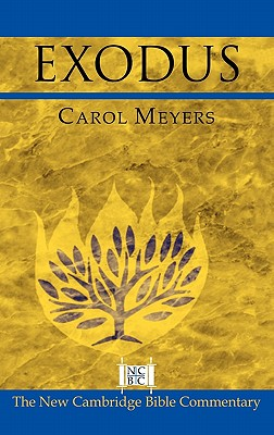 Exodus - Meyers, Carol L, and Witherington, Ben, III (Editor), and Arnold, Bill T, Professor, Ph.D. (Editor)