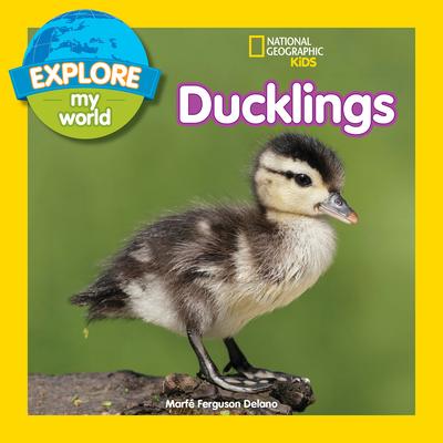 Explore My World: Ducklings - Delano, Marfe