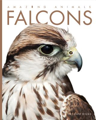 Falcons - Riggs, Kate