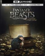 Fantastic Beasts and Where to Find Them [SteelBook] [4K Ultra HD Blu-ray/Blu-ray] [Only @ Best Buy]