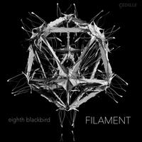 Filament - eighth blackbird