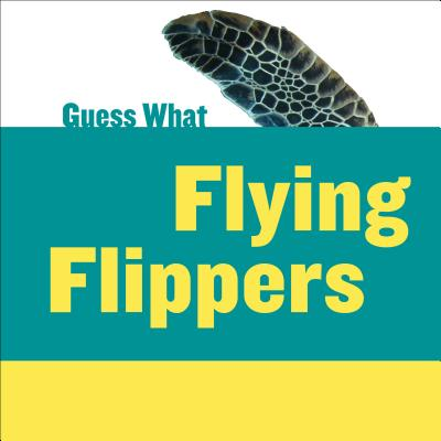 Flying Flippers: Sea Turtle - Macheske, Felicia