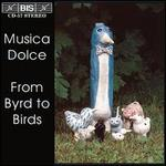 From Byrds to Birds