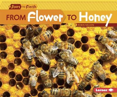 From Flower to Honey - Nelson, Robin