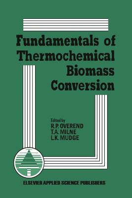 Fundamentals of Thermochemical Biomass Conversion - Overend, R P (Editor)