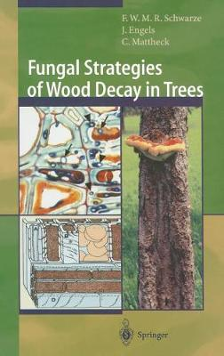 Fungal Strategies of Wood Decay in Trees - Schwarze, Francis W M R