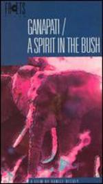 Ganapati / A Spirit in the Bush