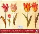 Gaude flore