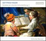 Gottfried Finger: Sonatae pro Diversis Instrumentis Op. 1