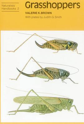 Grasshoppers - Brown, Valerie K.