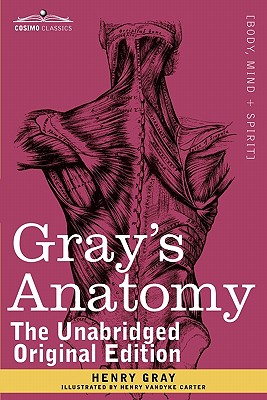 Gray's Anatomy: Descriptive and Surgical - Gray, Henry, M.D., and Carter, Henry Vandyke