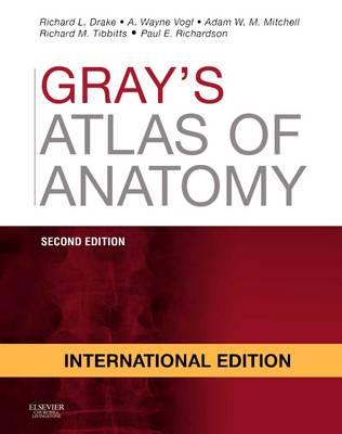 Anatomy edition grays pdf 2nd