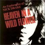 Heaven in a Wild Flower: An Exploration of Nick Drake