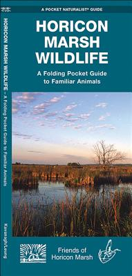 Horicon Marsh Wildlife: An Introduction to Familiar Species - Kavanagh, James, and Friends of Horicon Marsh