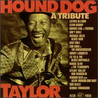 Hound Dog Taylor: A Tribute - Various Artists