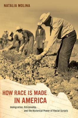 How Race Is Made in America: Immigration, Citizenship, and the Historical Power of Racial Scripts - Molina, Natalia