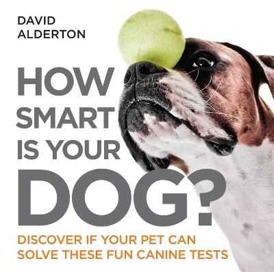How Smart Is Your Dog?: Discover If Your Pet Can Solve These Fun Canine Tests - Alderton, David