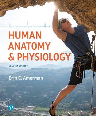 Human Anatomy & Physiology - Amerman, Erin