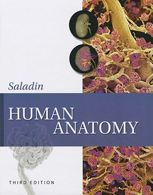Human Anatomy - Longenbaker, Susannah, and Saladin, Kenneth S