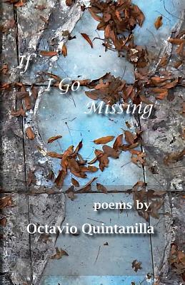 If I Go Missing - Quintanilla, Octavio