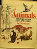 Animals; A Picture Book of Facts and Figures