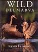 Wild Delmarva