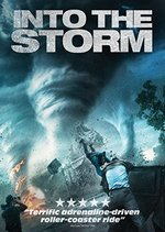 Into the Storm [Dvd]