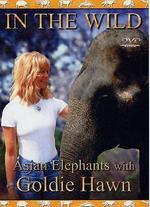 In the Wild: The Elephants of India with Goldie Hawn -