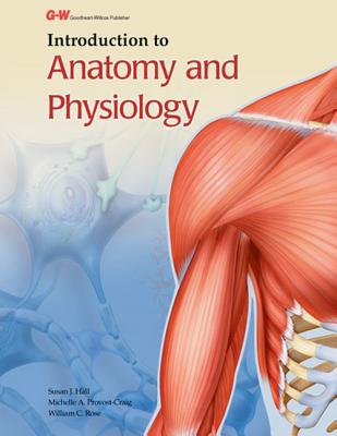 Introduction to Anatomy and Physiology - Hall, Susan J, and Provost-Craig, Michelle A, and Rose, William C