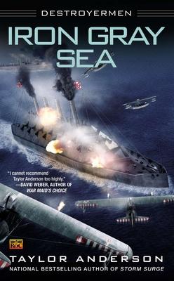 Iron Gray Sea: Destroyermen - Anderson, Taylor