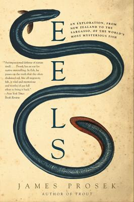 Eels: An Exploration, from New Zealand to the Sargasso, of the World's Most Mysterious Fish - Prosek, James