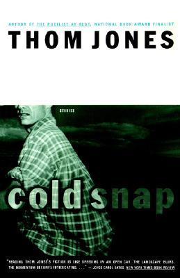 Cold Snap: Stories - Jones, Thom