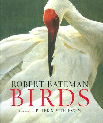 Birds - Bateman, Robert
