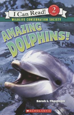 Amazing Dolphins! - Thomson, Sarah L