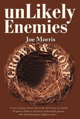 Unlikely Enemies - Morris, Joe