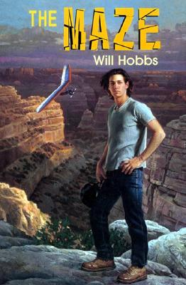 The Maze - Hobbs, Will